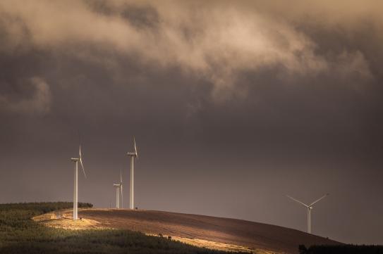 Overcast Wind-Farm