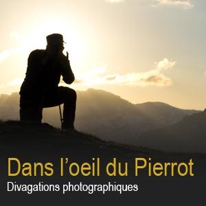 Pierre Bottex